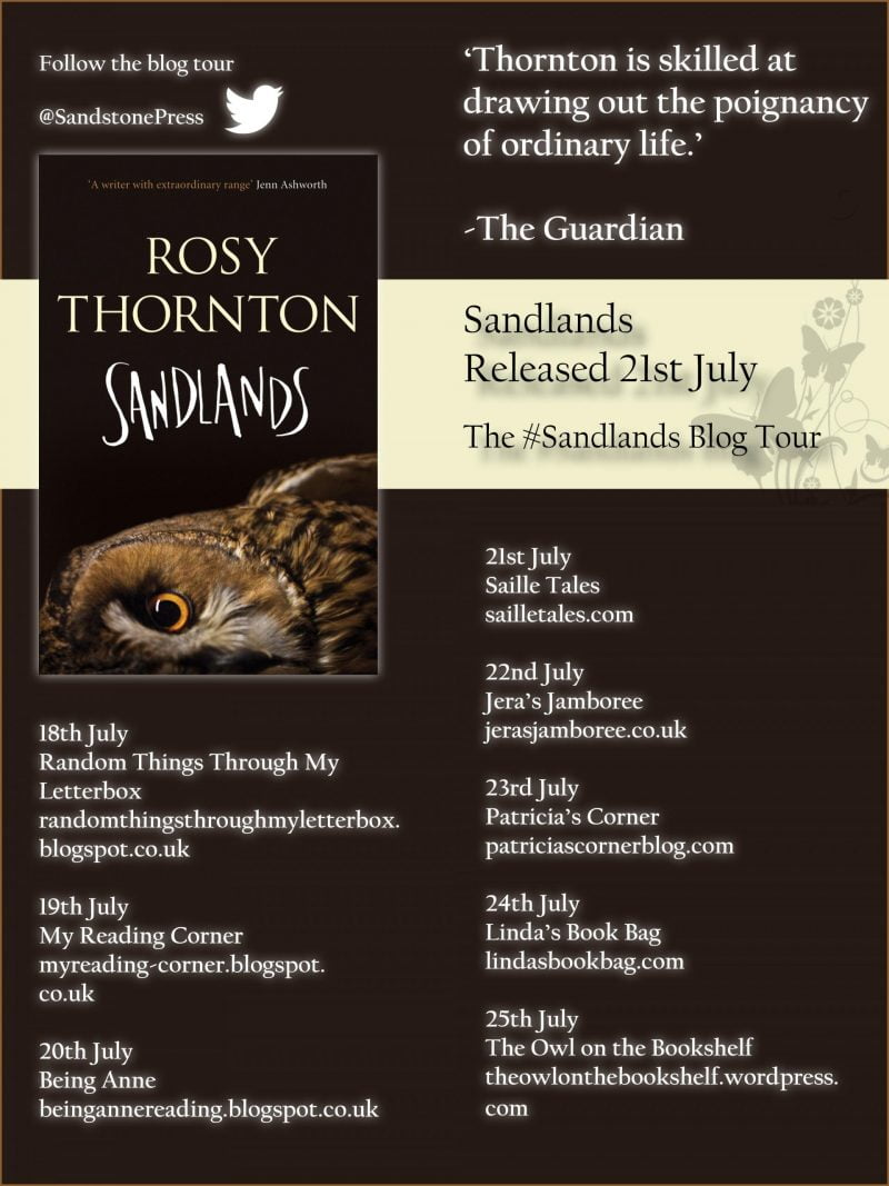 Sandlands Blog Tour Twitter